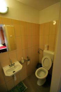 A bathroom at Bodrogzug Vendégház