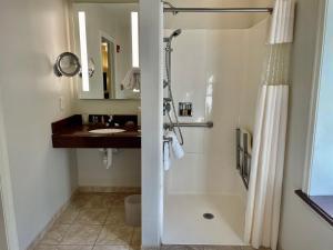A bathroom at Chestnut Hill Hotel