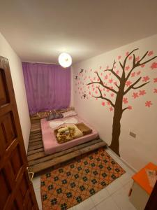 A bed or beds in a room at Vlora Backpackers Hostel
