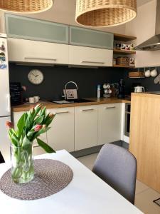 Kuchyňa alebo kuchynka v ubytovaní Apartmán SUZANNE