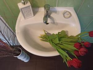 Ванная комната в Helena Ziakova- apartmány