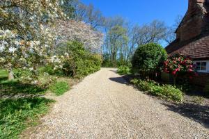 A garden outside Walnut Tree Cottage