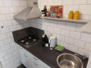 A kitchen or kitchenette at Prins Appartementen
