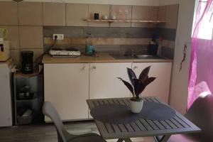 A kitchen or kitchenette at gite du stade studio