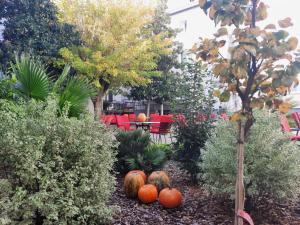 A garden outside Hotel Porto