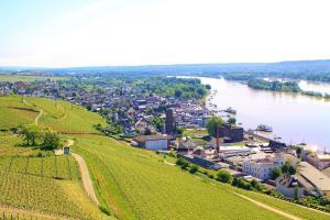 Vue panoramique sur l'établissement Pension Post Rüdesheim