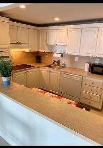 A kitchen or kitchenette at Vacantion Sunny Miami