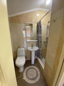 Ванная комната в Zemfira