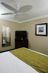 Un ou plusieurs lits dans un hébergement de l'établissement Hi View Inn & Suites