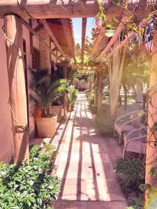 A garden outside Pousada Oasis Paracuru