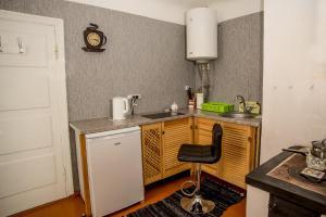 Virtuve vai virtuves aprīkojums naktsmītnē Timemachine Apartment