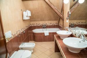 A bathroom at Chateau Zbiroh