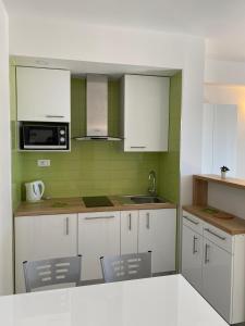 Kuchyň nebo kuchyňský kout v ubytování Apartments Adria