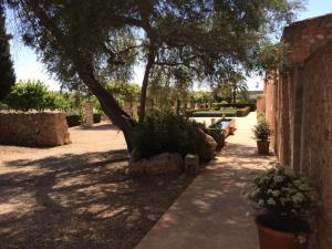 Ogród w obiekcie Casa Rural Son Bernadinet