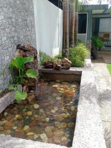 A garden outside TEBiNG Guest House Taman Negara Malaysia Kuala Tahan