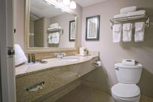 A bathroom at Wingate by Wyndham Savannah Airport