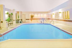 المسبح في Baymont by Wyndham Dallas/ Love Field أو بالجوار
