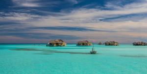 The swimming pool at or near Gili Lankanfushi Maldives
