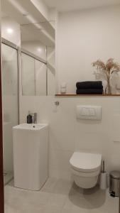 A bathroom at Apartamenty Ceglane