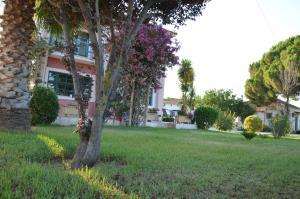 A garden outside Rena's House