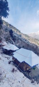 Magical Mountain Camping and Trekking during the winter