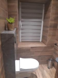 Łazienka w obiekcie Apartament przy jeziorze Czorsztynskim