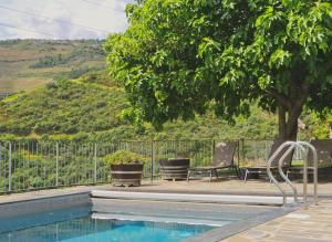 The swimming pool at or close to Quinta do Tedo