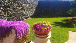 A garden outside Hotel Le Sabbie