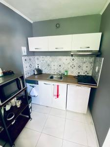A kitchen or kitchenette at Studio proche plage et calanques Excursion bateau possible