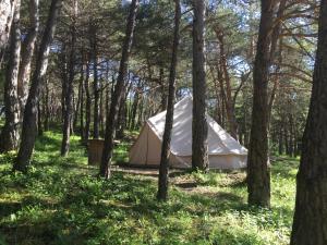 Jardin de l'établissement Camping La Chabannerie