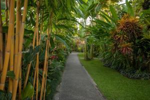 A garden outside Komaneka at Monkey Forest Ubud