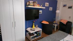 TV/Unterhaltungsangebot in der Unterkunft Ferienwohnung Neuensien
