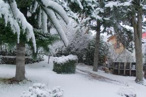 LA PONDEROSA Bungalows durante el invierno