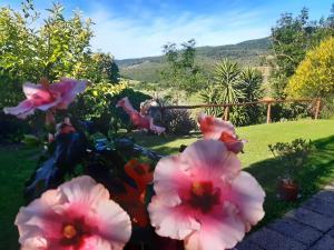 Giardino di Agriturismo Colleverde Capalbio