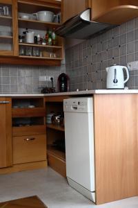 A kitchen or kitchenette at Ubytování na statku