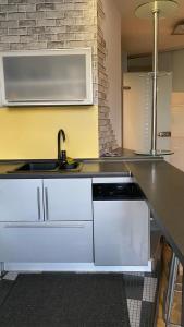A kitchen or kitchenette at Двухкомнатные апартаменты на Кутузовском