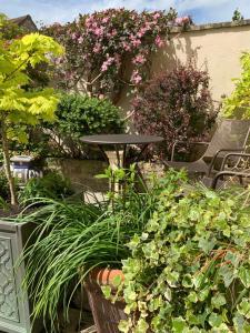 A garden outside Wee Grange