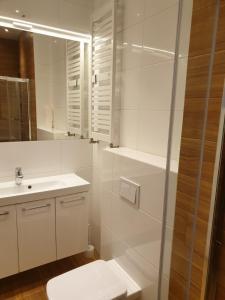 A bathroom at Maly apartament w zieleni blisko jeziora