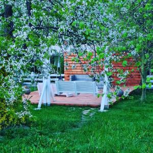 Ogród w obiekcie Dworek sw.Antoniego