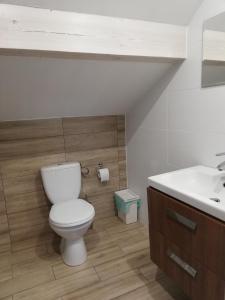A bathroom at PAKLADA 3 Pokój typu studio