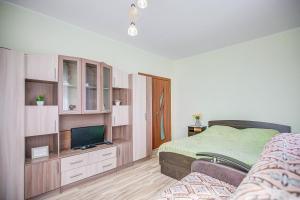 Телевизор и/или развлекательный центр в Apartment on Leninskaya