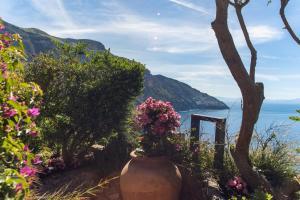 Vista generica sulle montagne o vista sulle montagne dall'interno della villa