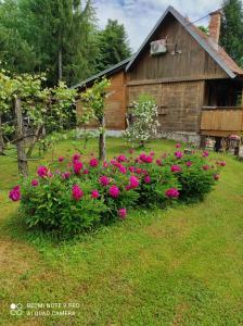 A garden outside Dorina hiža
