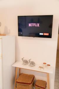 Télévision ou salle de divertissement dans l'établissement Rhodes Backpackers Boutique Hostel and Apartments