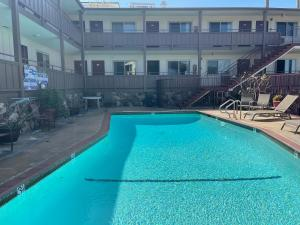 The swimming pool at or near Seahorse Inn