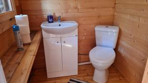 A bathroom at Spāres Prieduļi