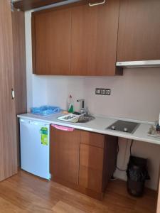 A kitchen or kitchenette at FALCON PALAS SUİTES