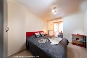 Легло или легла в стая в Dalia