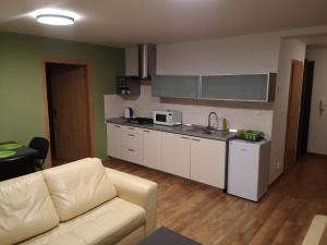 Kuchyňa alebo kuchynka v ubytovaní Apartmán Timea, Vysoké Tatry
