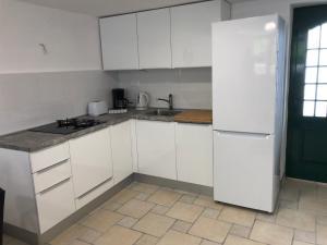 A kitchen or kitchenette at Steinhaus Dalmatien